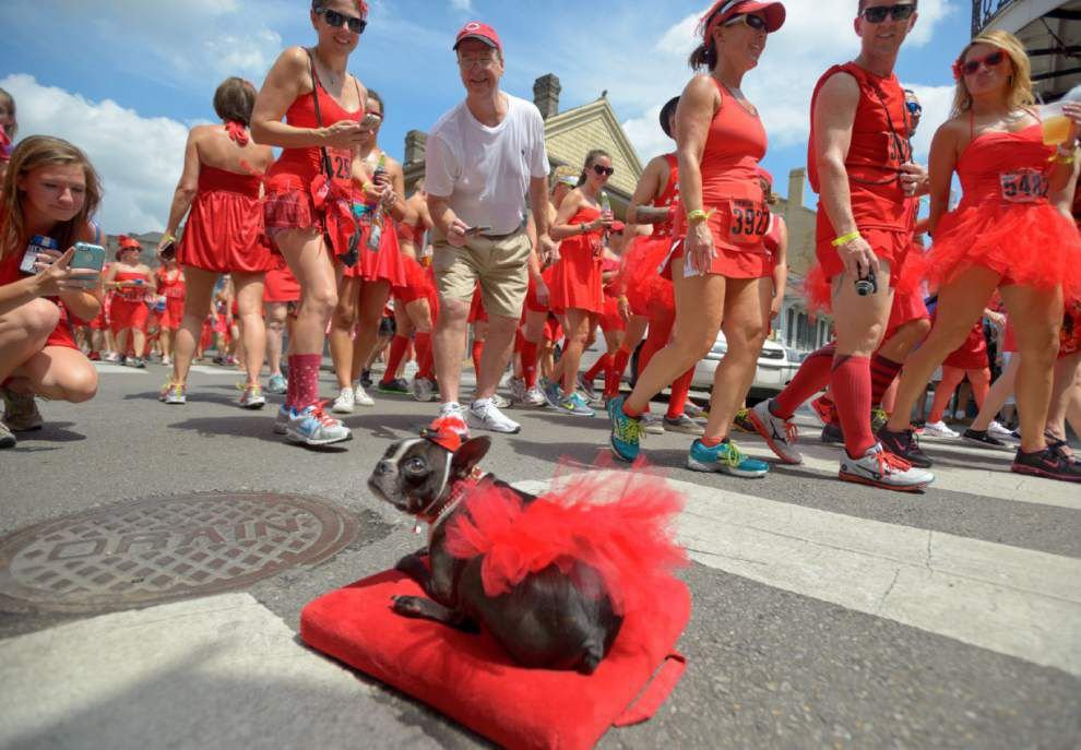 Photos: Crescent City scene of annual Red Dress Run _lowres