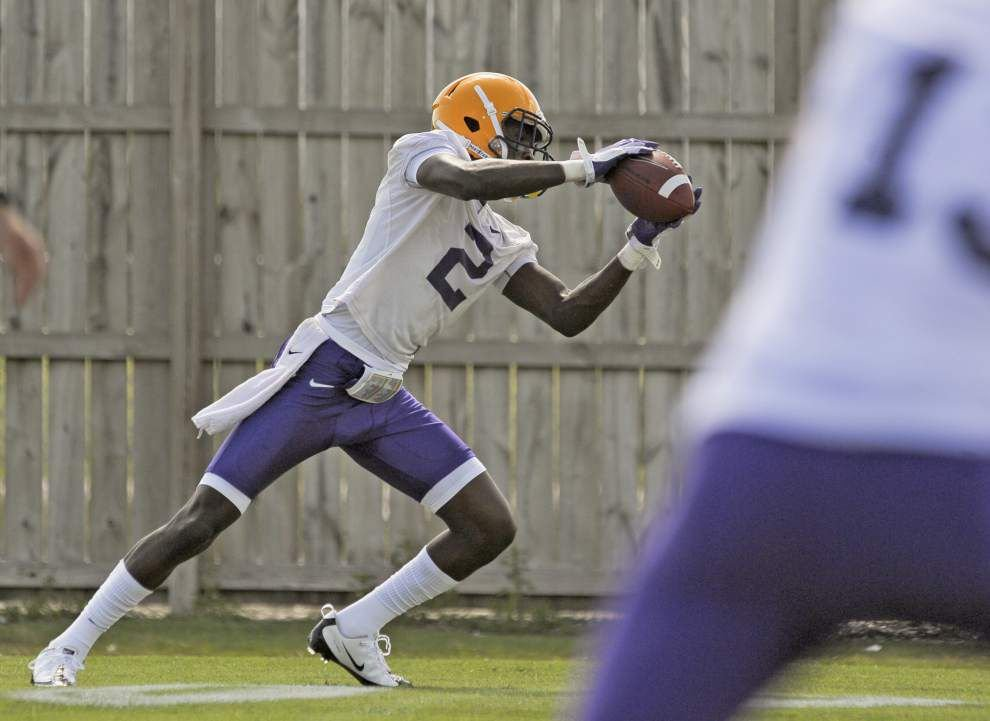 LSU receiver Avery Peterson: A few minutes with _lowres