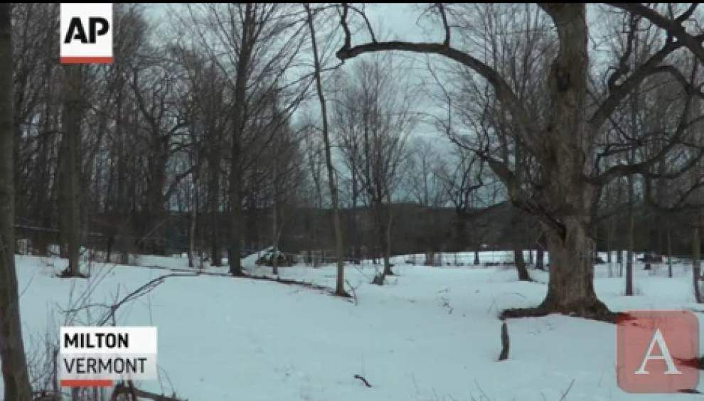 Maple syrup makers tap into new technology _lowres