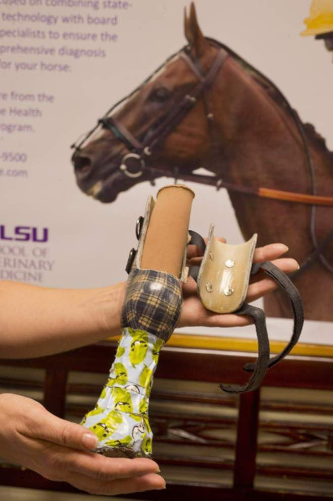 LSU Vet School student works on equine leg implant _lowres