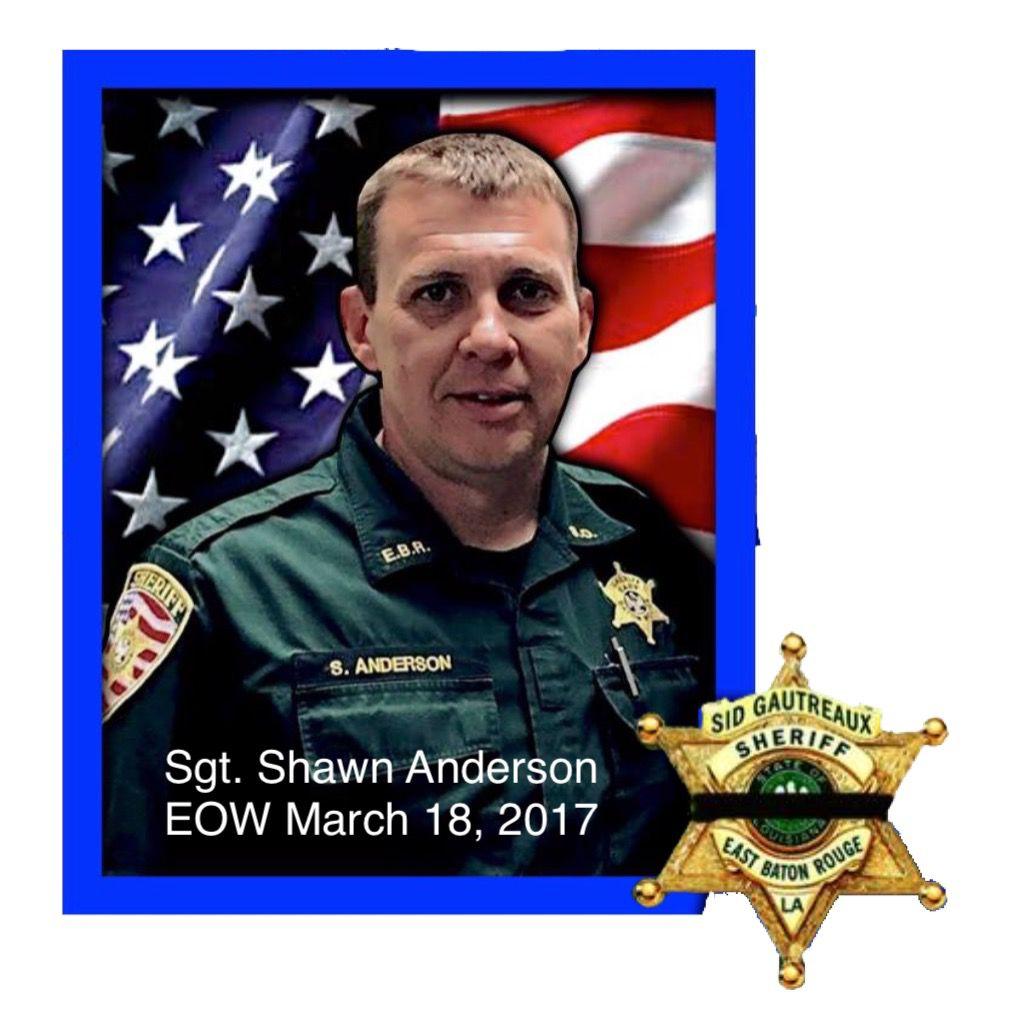Shawn Anderson net worth