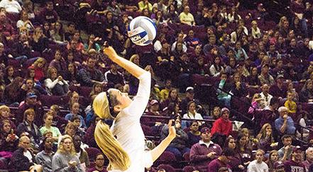 No pain, no gain: A&M volleyball takes the top despite injuries