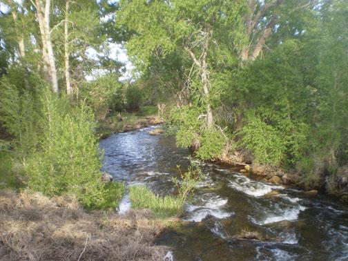 South Ark River