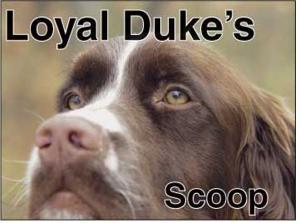 Duke's Scoop
