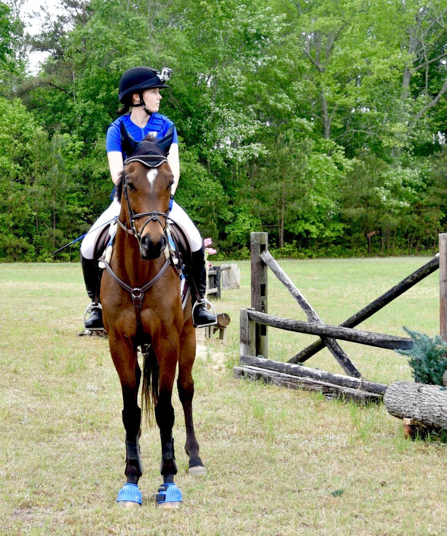 Heather ridge farm horse trials multimedia for 195 american fusion cuisine