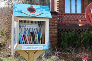 Little libraries popping up in midtown increase donation and literacy