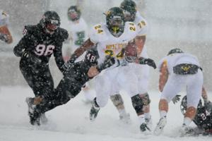 Round One: Wayne State 48, St. Cloud State 38; Nov. 19