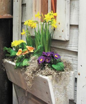Window boxes deliver