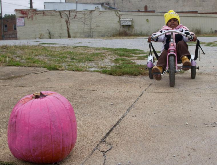 Pink Pumpkin Festival