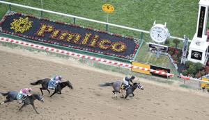 Oxbow upsets Orb Preakness Stakes