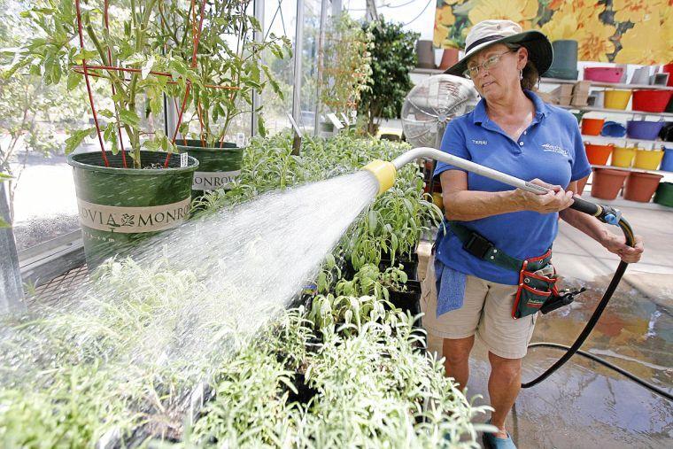 Best in the World Southwood Landscape and Garden Center Tulsa – Plant World Nursery and Garden Center