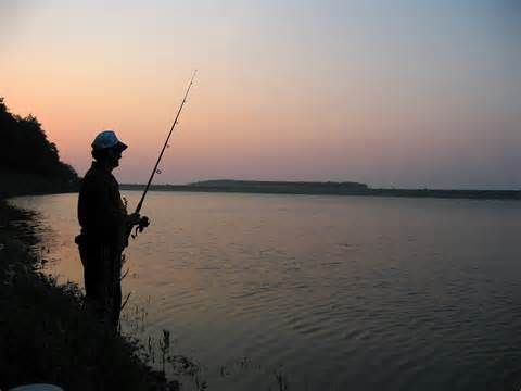 Northeast oklahoma fishing report tulsa world community for Fishing forecast oklahoma