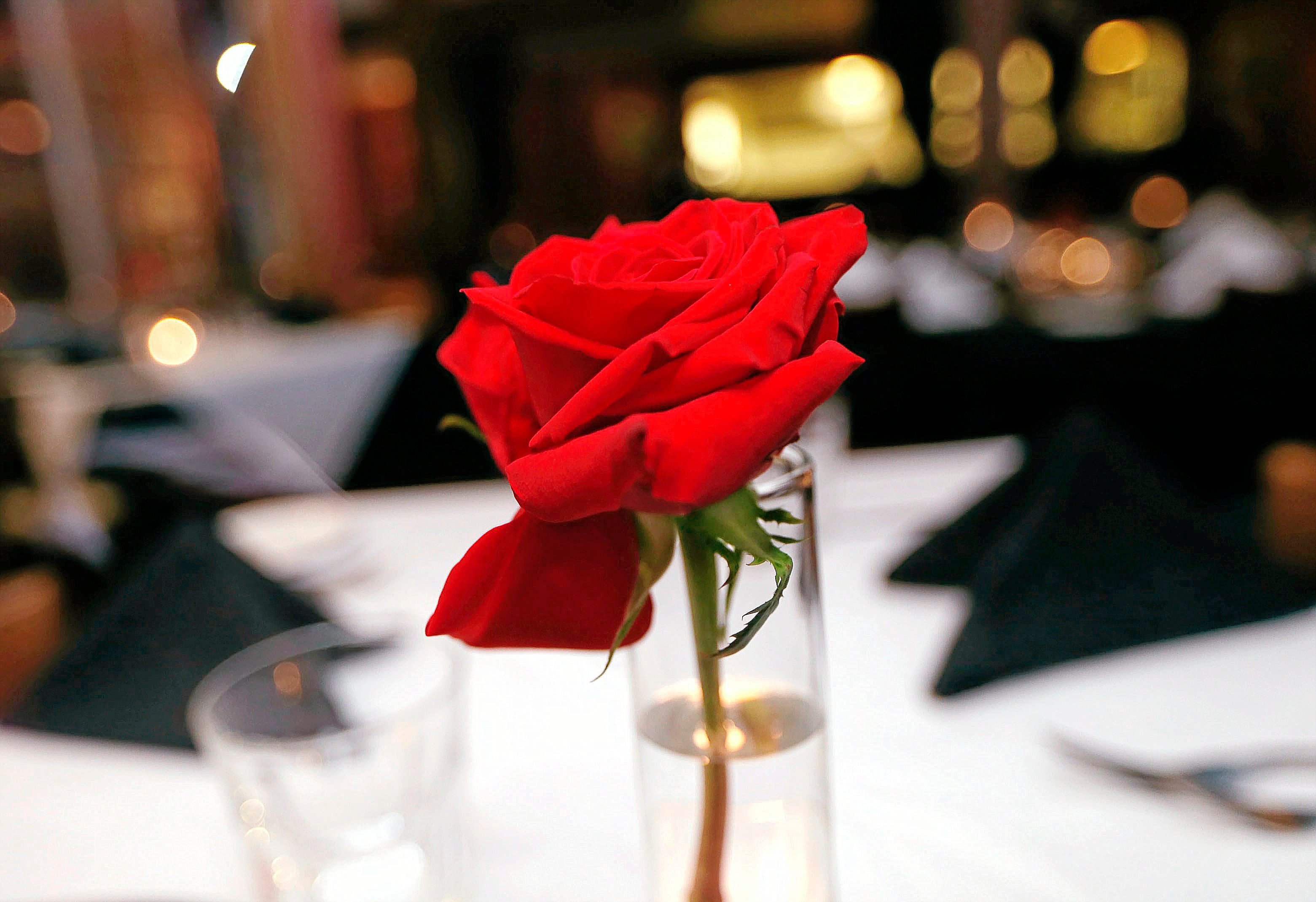 Do you have valentine 39 s day reservations yet tulsa 39 s 10 for Romantic hotels for valentine s day