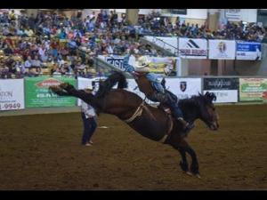 A glimpse into the 2015 Franklin Rodeo