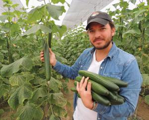 Desert Gardener: Organic vegetables gaining in popularity