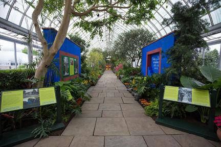 Desert Gardener Frida Kahlo 39 S Art Gardens And Life Features