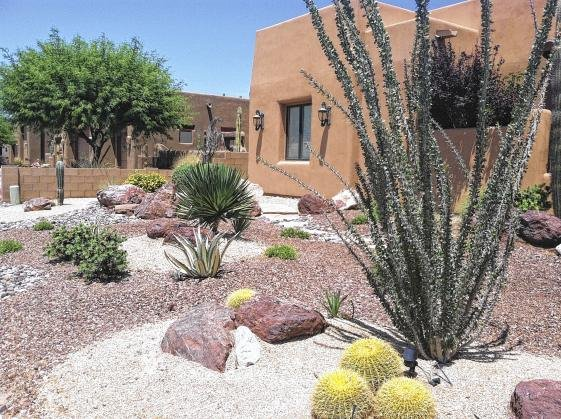 Grass or desert pros cons to each type of landscaping for Landscaping rocks yuma az
