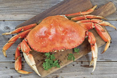 Courtesy of the Dungeness Crab & Seafood Festival