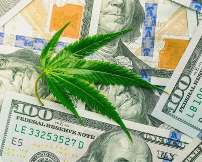 CANNABIS WITH MONEY