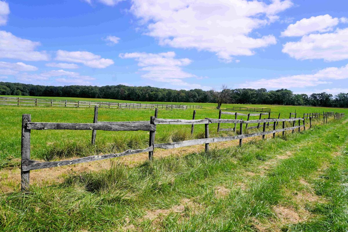 stafford farm shot