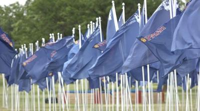BLUE FLAGS FOR CHILD ABUSE