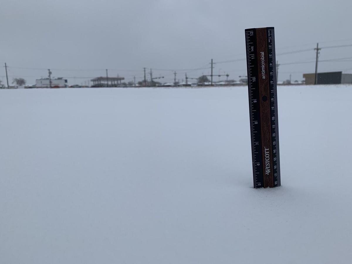 Snow Jan. 10, 2021