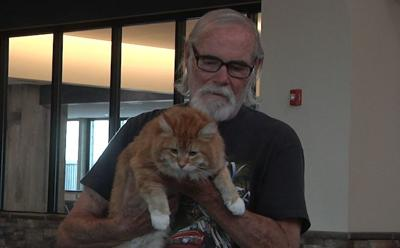 Bobby the cat returns home after a year and a half missing