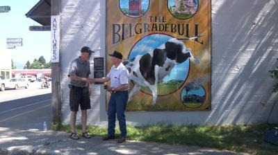 Belgrade Bull mural