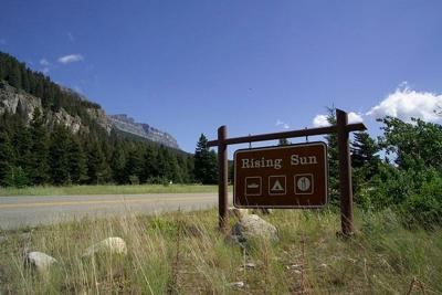 Hard-sided camping only at Glacier's Rising Sun campground after black bear incident