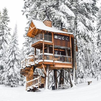 Whitefish treehouse