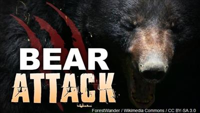 Woman attacked by bear