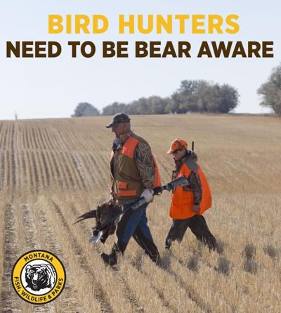 Being Bear Aware while bird hunting