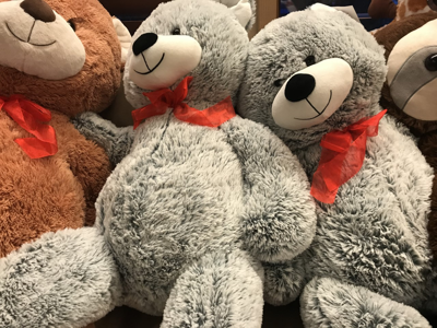 4th Annual Teddy Bear Toss to benefit Eagle Mount taking place Thursday in Bozeman