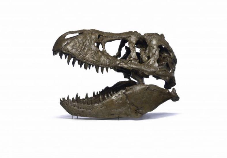 wankel rex smithsonian