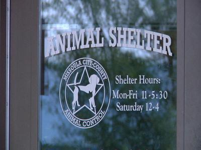 Missoula's Animal Control Shelter is looking for adoptive homes