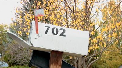 Mail scam tracked back to local mailboxes