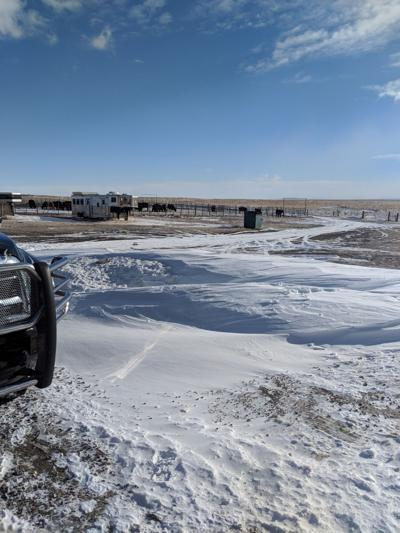 Rancher & cattle owners seeing winter weather impacts