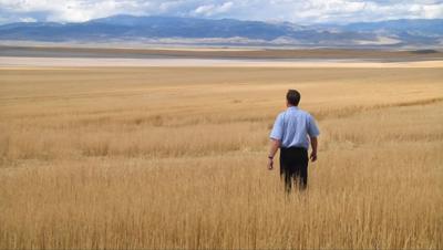 Franck Groeneweg Wheat Montana