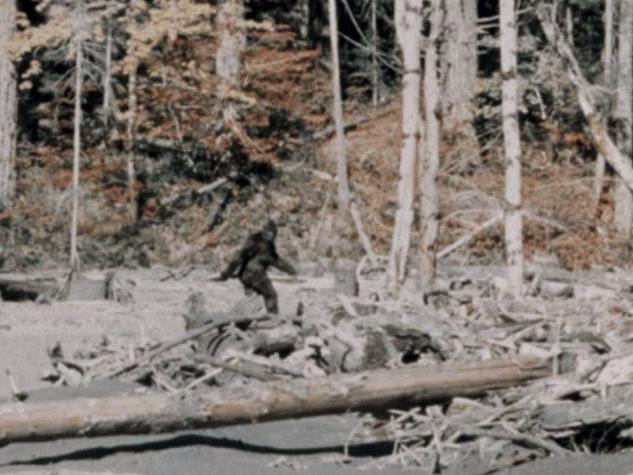 Man says he was shot at after being mistaken for Bigfoot.