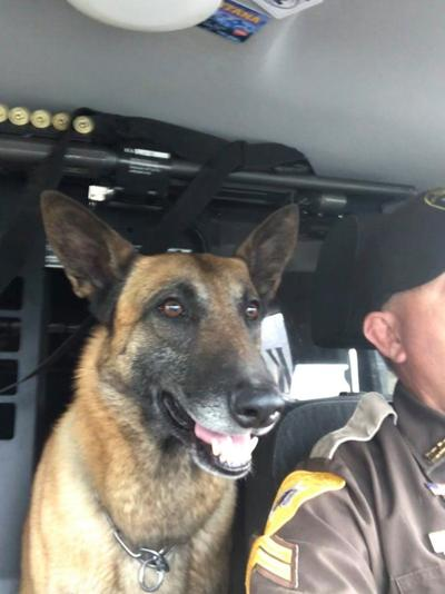 K9 Sheriff Miles is having a birthday