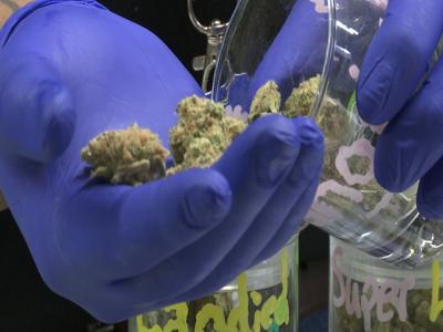 Groups working to get recreational marijuana on November ballot