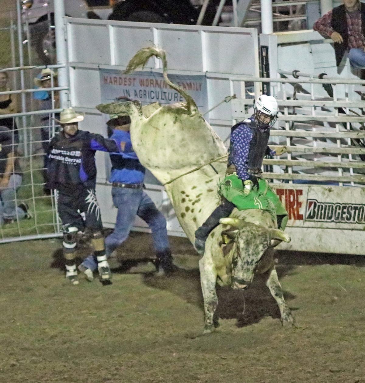 champion bull ride 2018