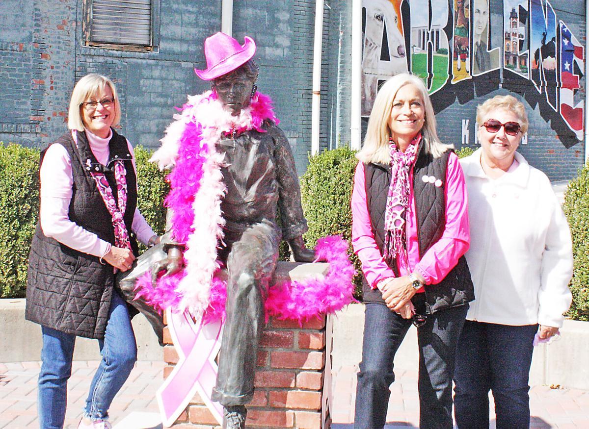 Pink organizers
