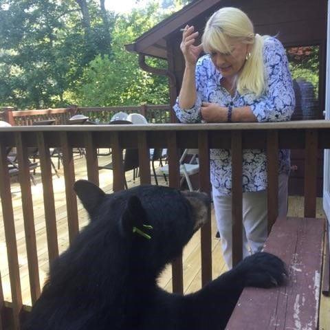 Mary & the Bear