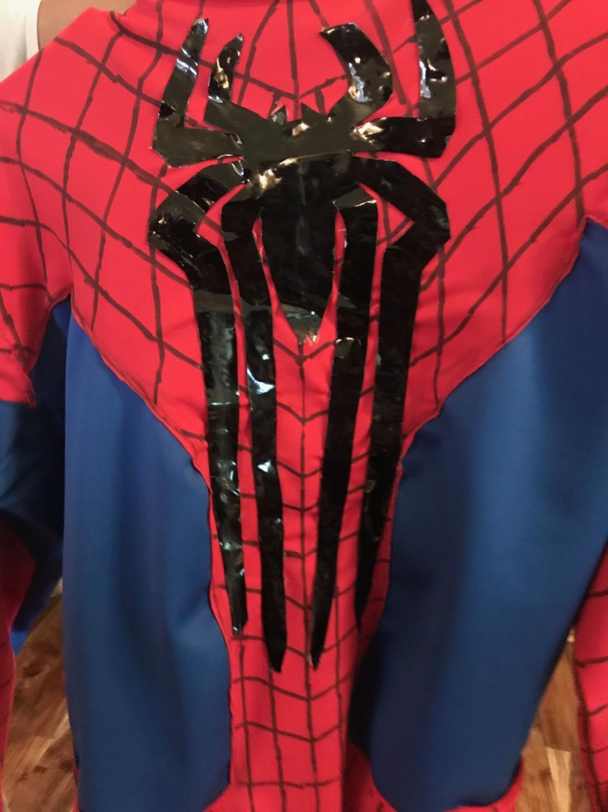 Spider-Man Detail