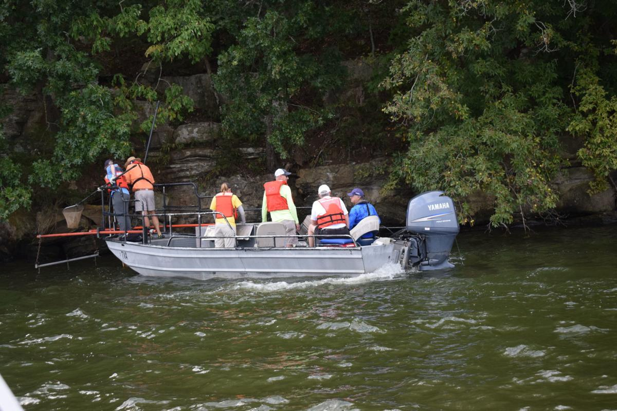 TVA Plant Camp Electrofishing