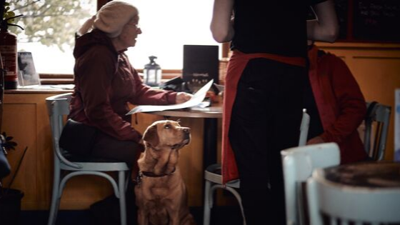 Person with dog in cafe