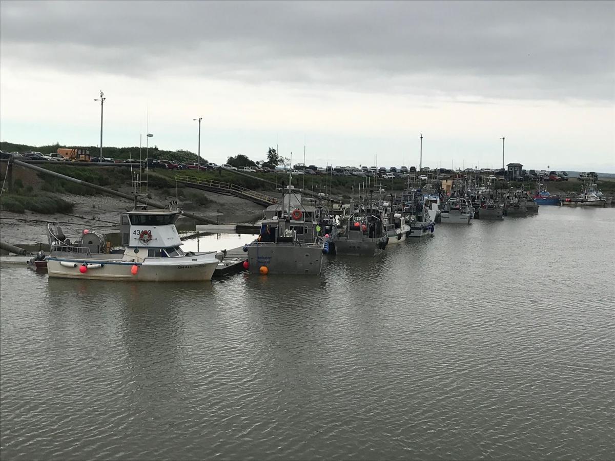 Dillingham boat harbor