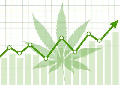Marijuana revenue increasing