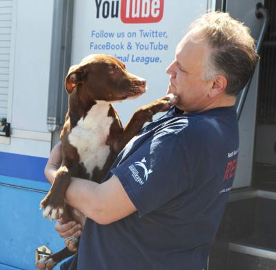 North Shore Animal League mobile unit visits Albany
